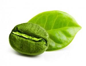 Grüne Kaffeebohne